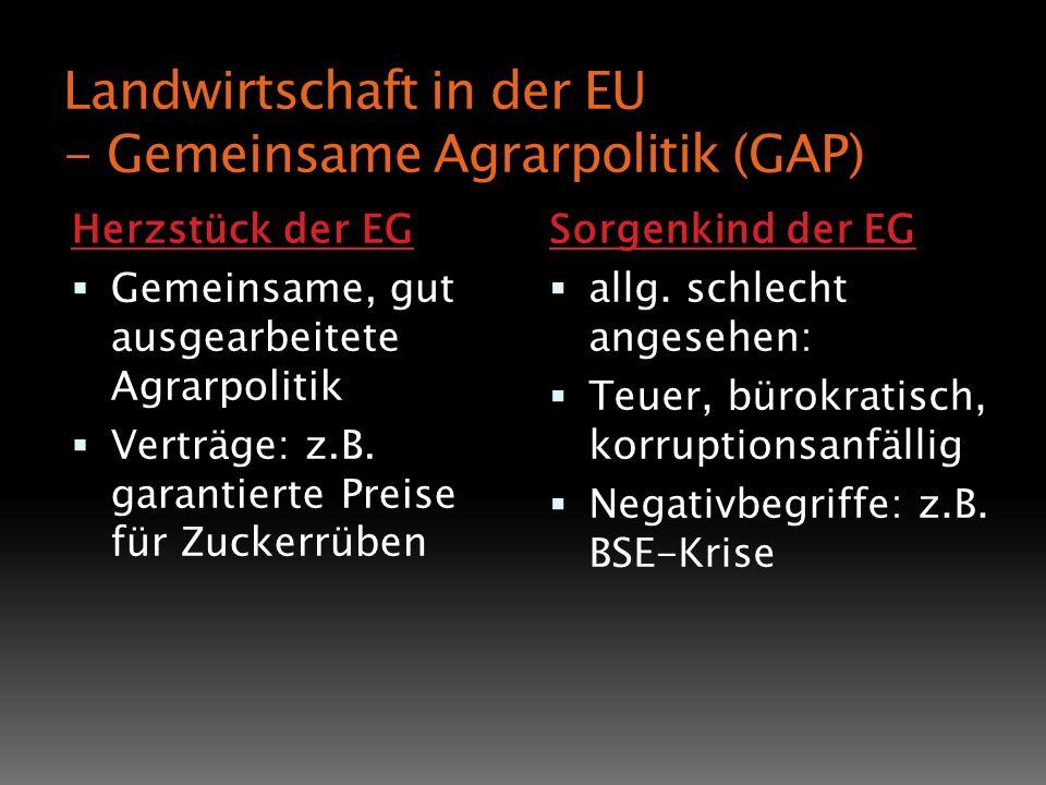 Landwirtschaft in der EU - Gemeinsame Agrarpolitik (GAP) Herzstück der EG Gemeinsame, gut ausgearbeitete Agrarpolitik Verträge: z.B. garantierte Preis