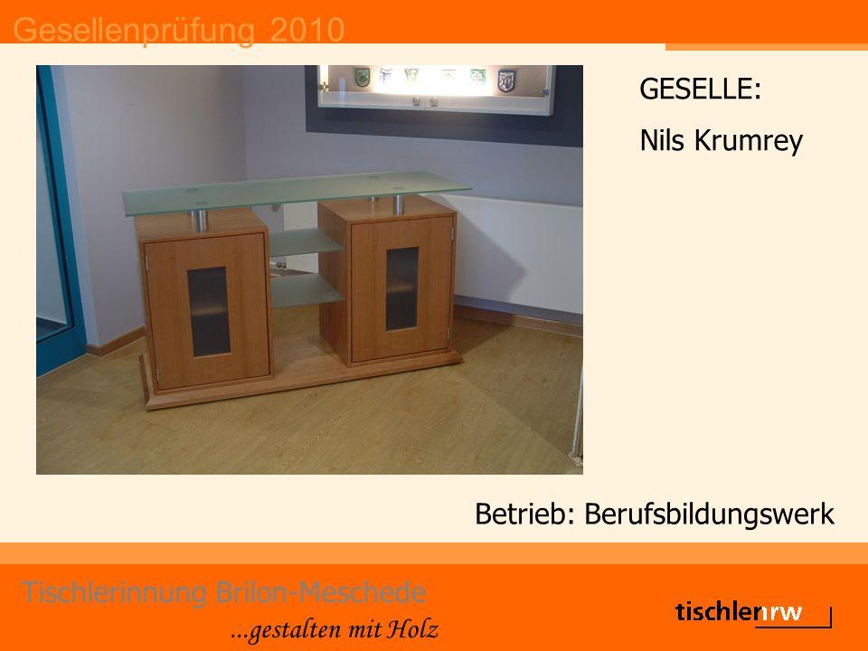 Gesellenprüfung 2010 Tischlerinnung Brilon-Meschede...gestalten mit Holz Betrieb: Berufsbildungswerk GESELLE: Nils Krumrey