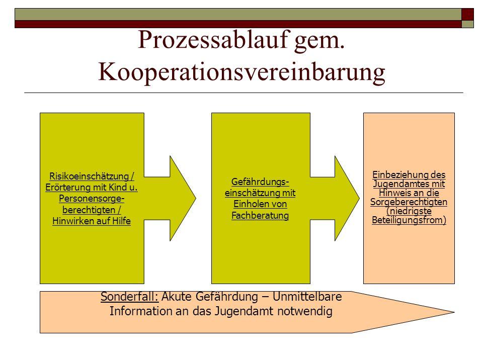 Prozessablauf gem. Kooperationsvereinbarung Risikoeinschätzung / Erörterung mit Kind u. Personensorge- berechtigten / Hinwirken auf Hilfe Gefährdungs-