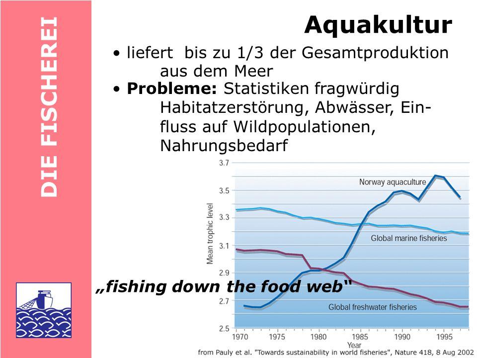 DIE FISCHEREI China Peru Europäische Union (13 von 15) Deutschland: 240 kt, 3.7 % an EU-Fang Fischfang nach Nationen Japan Chile USA