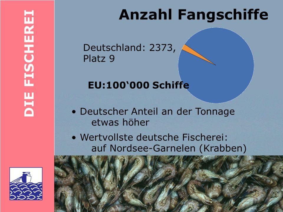 DIE FISCHEREI Fischerei: D: 4400 (Platz 8) E: 70000 (Platz 1) Fischverarbeitung: D: 11000 (Platz 4) (0.3 % aller Beschäftigten, weitere 3 % arbeiten in der Land- und Forstwirtschaft) Arbeitsplätze in der Fischerei Deutsche Fischimporte: 1 Mio.