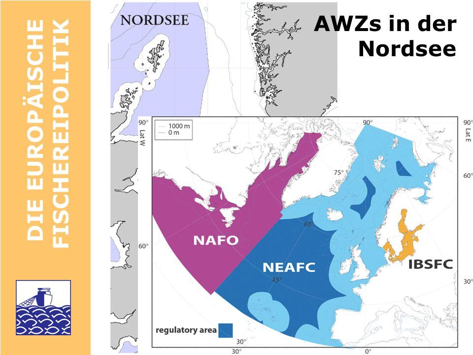 DIE EUROPÄISCHE FISCHEREIPOLITIK Fischereikontrolle EU-weite Logbuch-Scheine Satelliten-Überwachung (VMS) Fischereischutzboote Beobachter an Bord