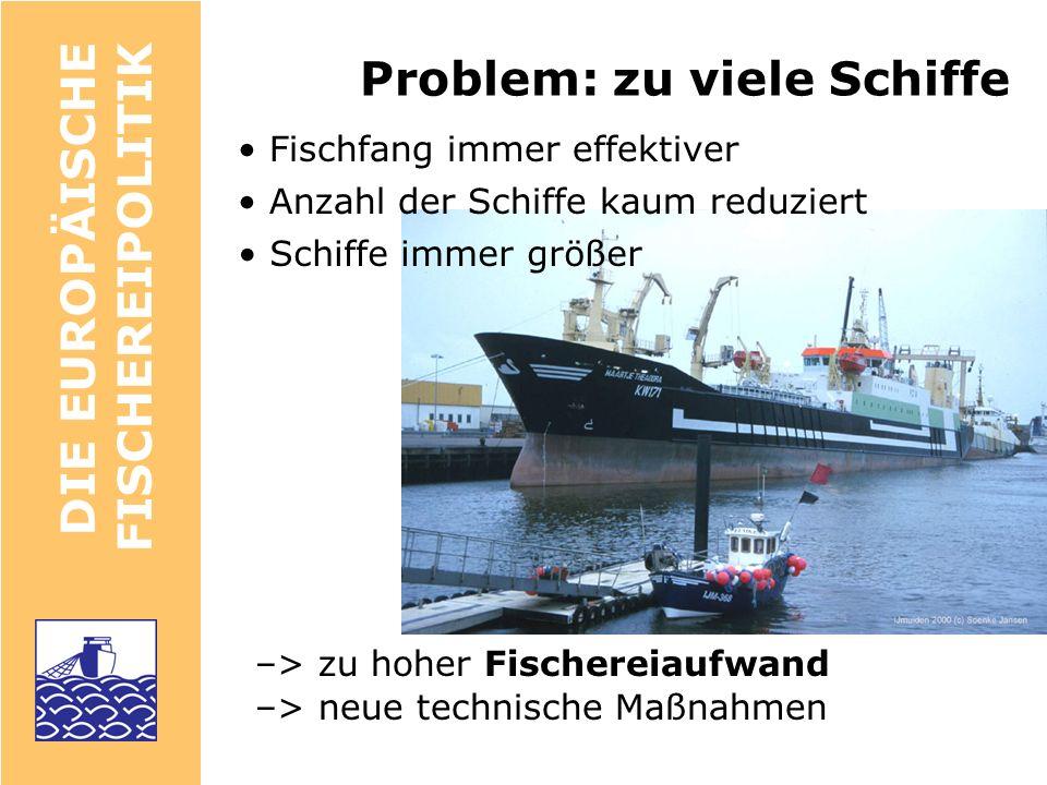 DIE EUROPÄISCHE FISCHEREIPOLITIK Der Vorsorgeansatz (precautionary approach, PA) UNO/FAO rule for sustainable fisheries, 1995 Referenzpunkte lösen zwingend Schutzmaßnahmen aus