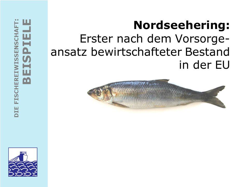 DIE FISCHEREIWISSENSCHAFT : BEISPIELE Nordseehering: Verbreitung