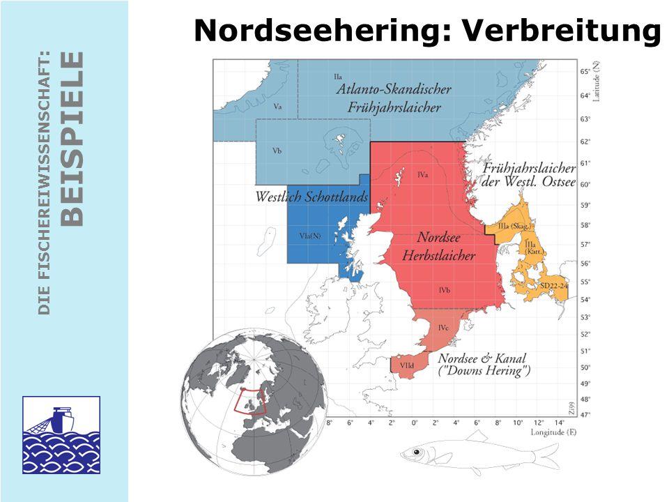DIE FISCHEREIWISSENSCHAFT : BEISPIELE Nordseehering: Fang, Biomasse, Nachwuchs