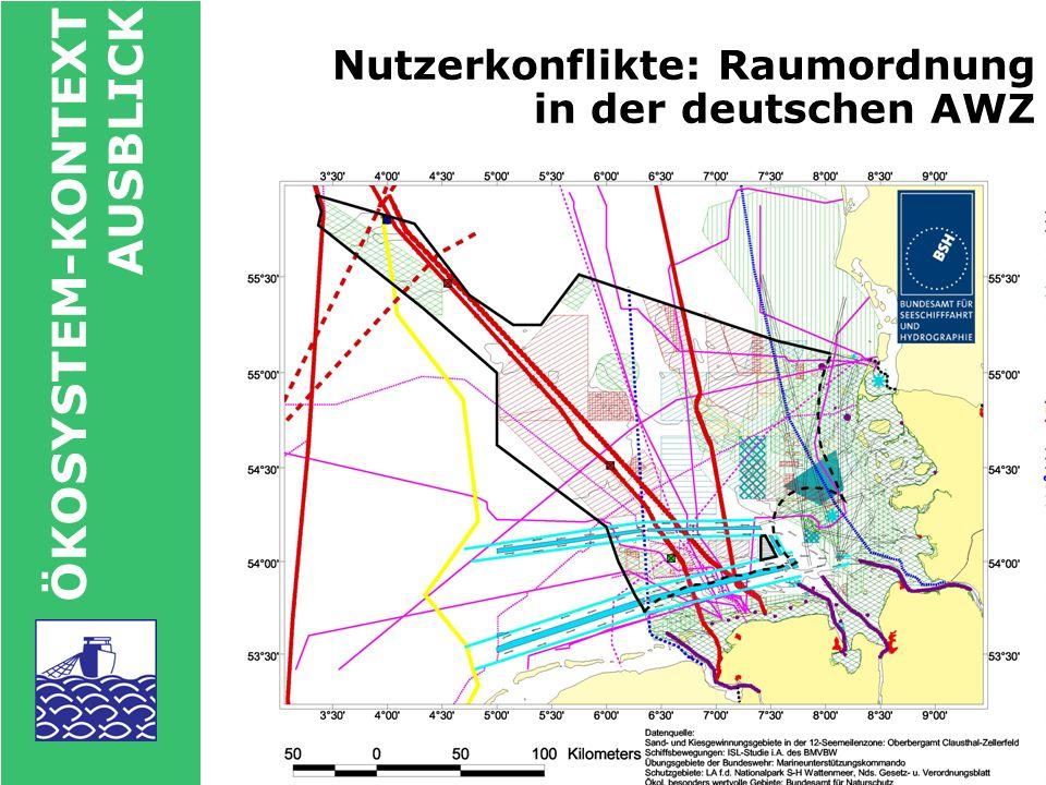ÖKOSYSTEM-KONTEXT AUSBLICK Offshore-Windparks - die Zukunft?