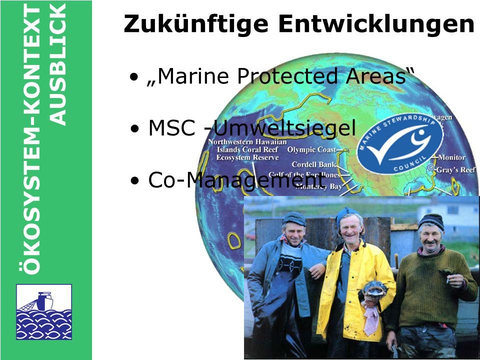 ÖKOSYSTEM-KONTEXT AUSBLICK Zusammenfassung Meere leergefischt.