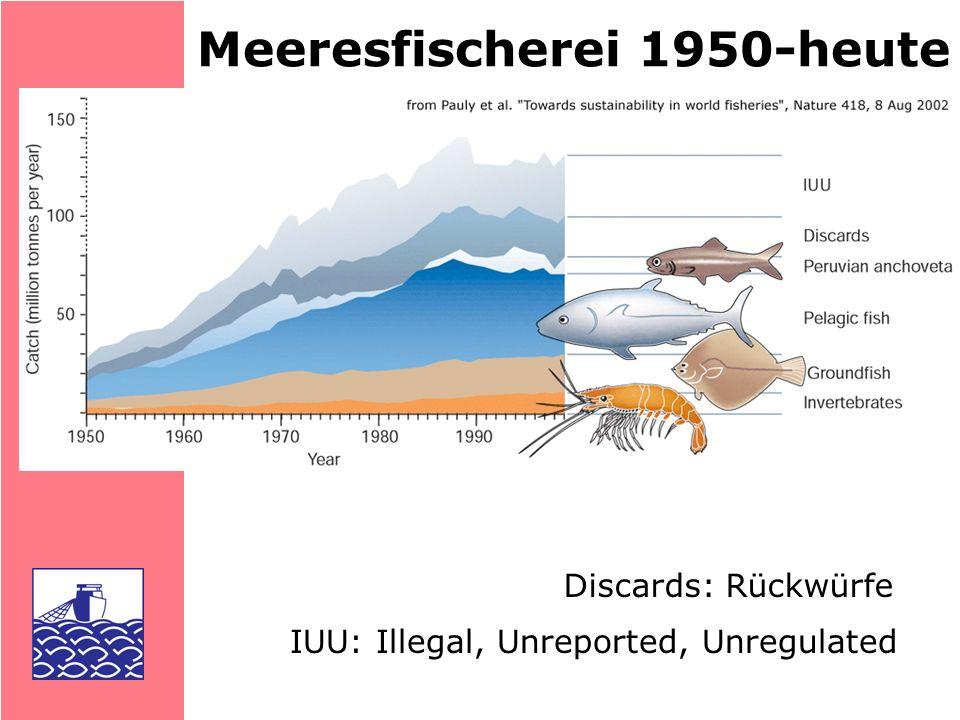 DIE FISCHEREI 77 % der Anlandungen von 200 Beständen...voll genutzt...überfischt...mit Entwicklungs- möglichkeiten Genutzte Bestände