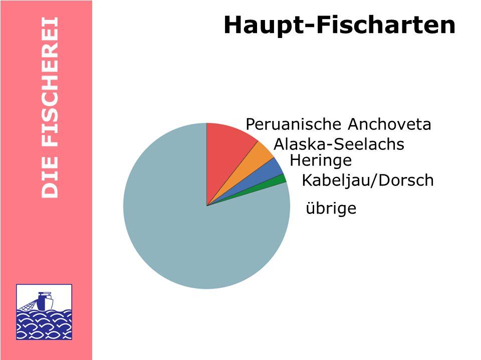 DIE FISCHEREI Fischereien Nordsee