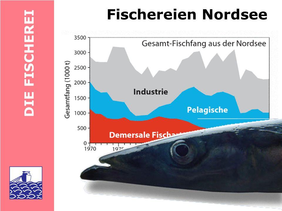 DIE FISCHEREI liefert bis zu 1/3 der Gesamtproduktion aus dem Meer Probleme: Statistiken fragwürdig Habitatzerstörung, Abwässer, Ein- fluss auf Wildpopulationen, Nahrungsbedarf Aquakultur fishing down the food web