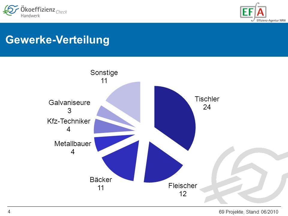 4 Gewerke-Verteilung 69 Projekte, Stand: 06/2010