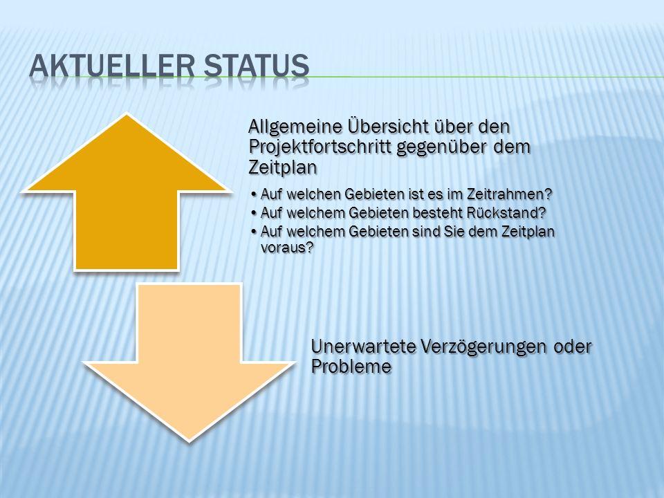 Allgemeine Übersicht über den Projektfortschritt gegenüber dem Zeitplan Auf welchen Gebieten ist es im Zeitrahmen?Auf welchen Gebieten ist es im Zeitrahmen.