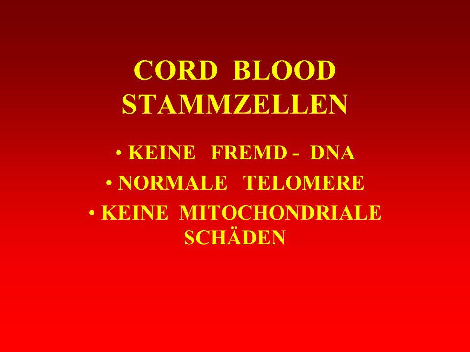CORD BLOOD STAMMZELLEN KEINE FREMD - DNA NORMALE TELOMERE KEINE MITOCHONDRIALE SCHÄDEN