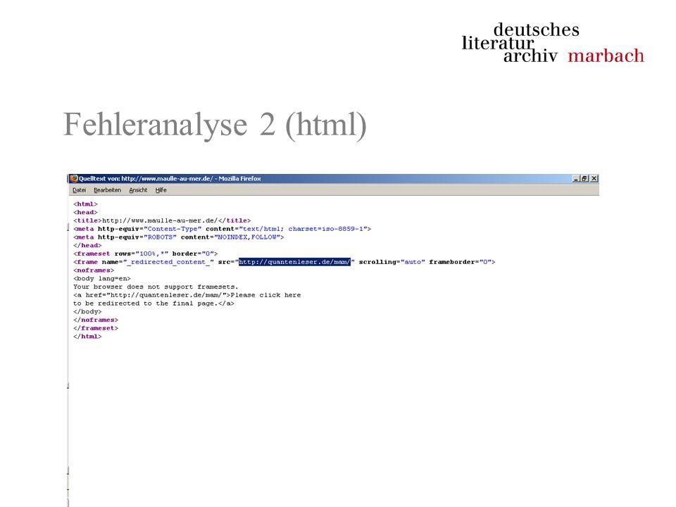 Fehleranalyse 2 (html)