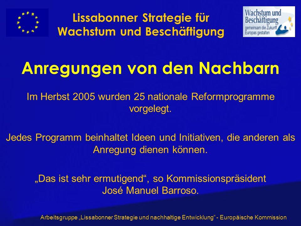 Arbeitsgruppe Lissabonner Strategie und nachhaltige Entwicklung - Europäische Kommission Anregungen von den Nachbarn Im Herbst 2005 wurden 25 nationale Reformprogramme vorgelegt.