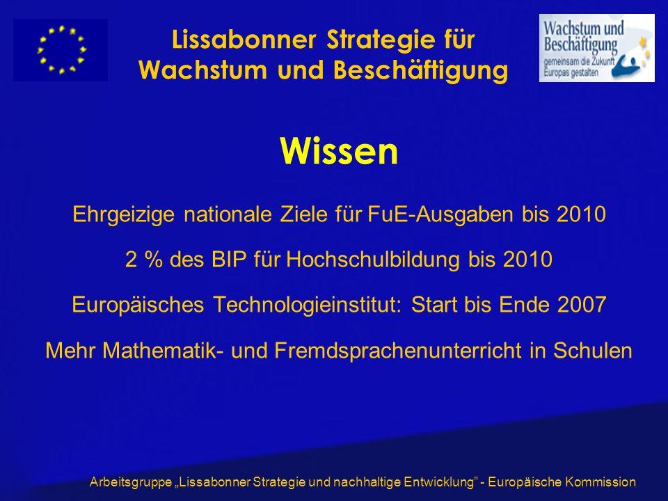 Arbeitsgruppe Lissabonner Strategie und nachhaltige Entwicklung - Europäische Kommission Wissen Ehrgeizige nationale Ziele für FuE-Ausgaben bis 2010 2