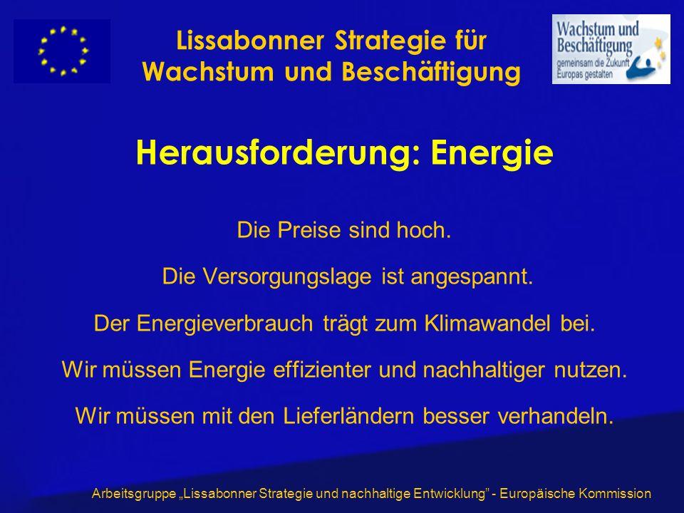 Arbeitsgruppe Lissabonner Strategie und nachhaltige Entwicklung - Europäische Kommission Herausforderung: Energie Die Preise sind hoch. Die Versorgung