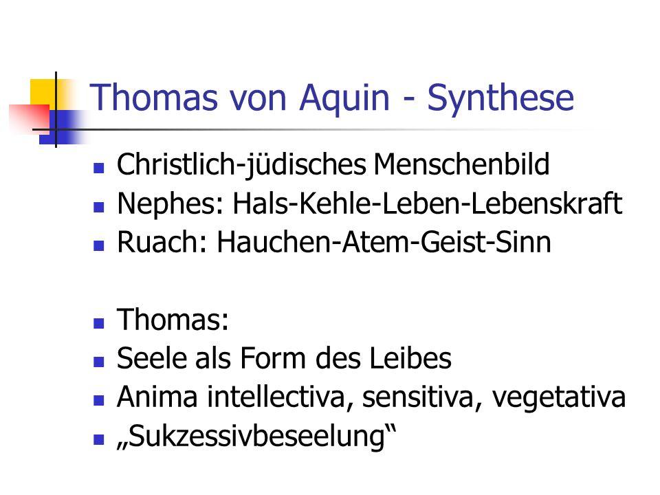 Thomas von Aquin - Synthese Christlich-jüdisches Menschenbild Nephes: Hals-Kehle-Leben-Lebenskraft Ruach: Hauchen-Atem-Geist-Sinn Thomas: Seele als Form des Leibes Anima intellectiva, sensitiva, vegetativa Sukzessivbeseelung