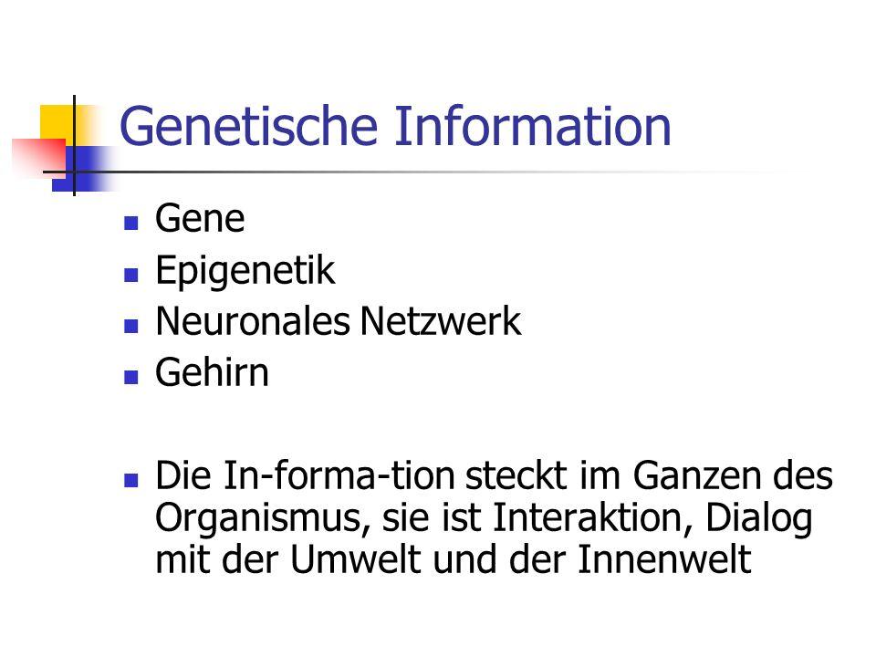 Genetische Information Gene Epigenetik Neuronales Netzwerk Gehirn Die In-forma-tion steckt im Ganzen des Organismus, sie ist Interaktion, Dialog mit der Umwelt und der Innenwelt