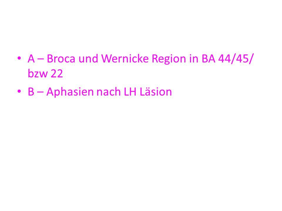 A – Broca und Wernicke Region in BA 44/45/ bzw 22 B – Aphasien nach LH Läsion