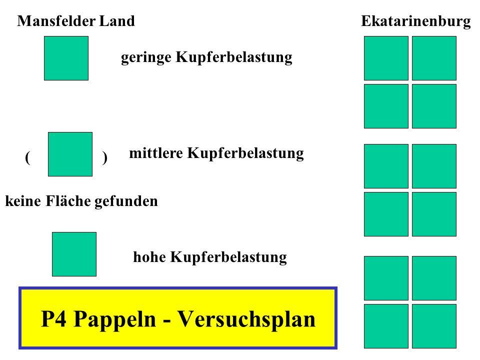 P4 Pappeln - Versuchsplan geringe Kupferbelastung mittlere Kupferbelastung hohe Kupferbelastung Mansfelder LandEkatarinenburg ( ) keine Fläche gefunde