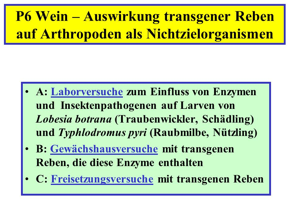 A: Laborversuche zum Einfluss von Enzymen und Insektenpathogenen auf Larven von Lobesia botrana (Traubenwickler, Schädling) und Typhlodromus pyri (Rau