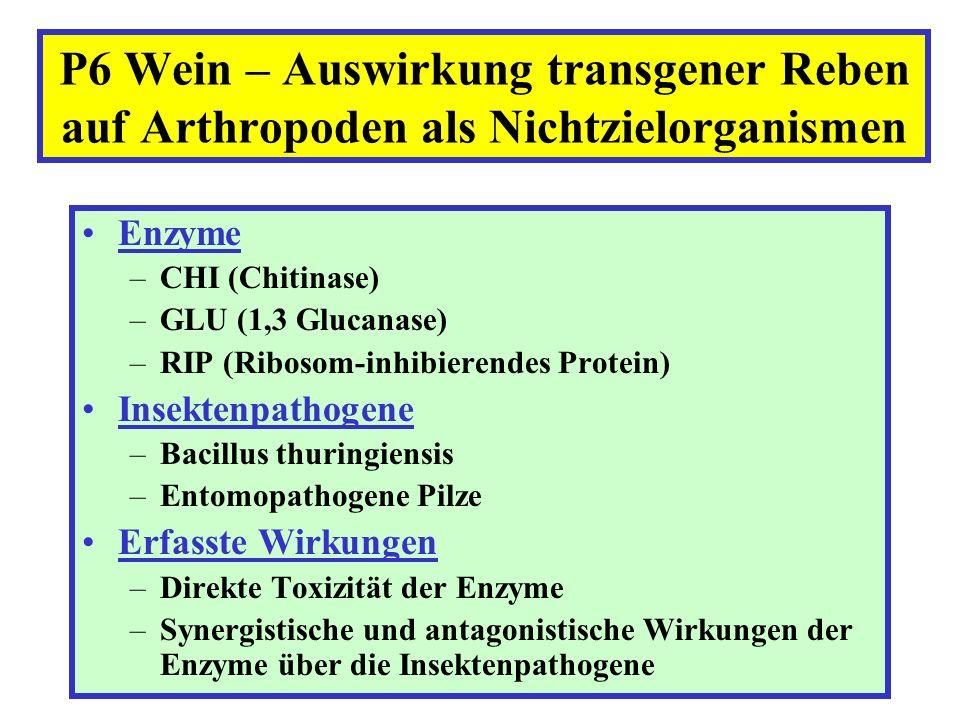 Enzyme –CHI (Chitinase) –GLU (1,3 Glucanase) –RIP (Ribosom-inhibierendes Protein) Insektenpathogene –Bacillus thuringiensis –Entomopathogene Pilze Erf