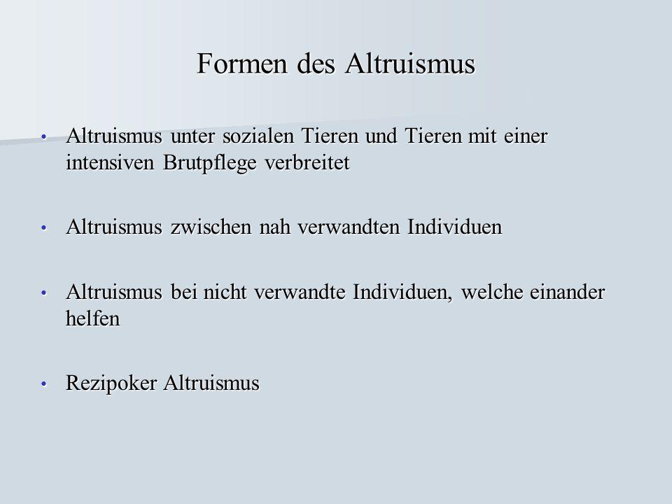 Formen des Altruismus Altruismus unter sozialen Tieren und Tieren mit einer intensiven Brutpflege verbreitet Altruismus unter sozialen Tieren und Tier