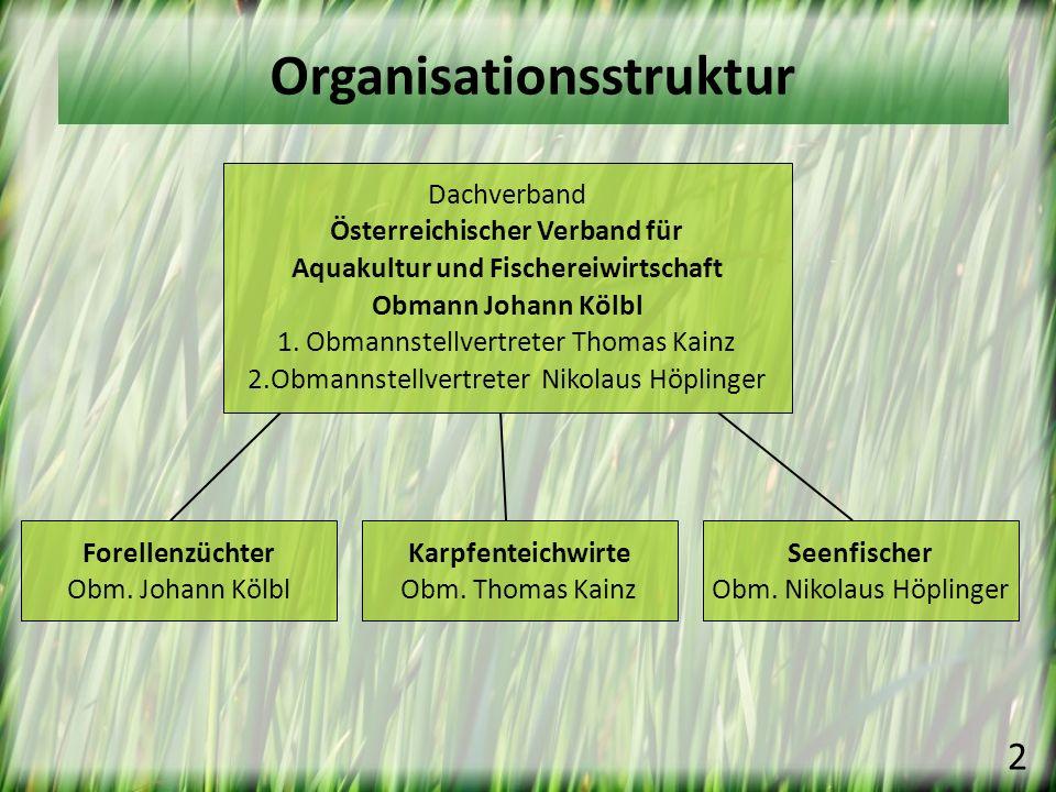 Organisationsstruktur Dachverband Österreichischer Verband für Aquakultur und Fischereiwirtschaft Obmann Johann Kölbl 1. Obmannstellvertreter Thomas K