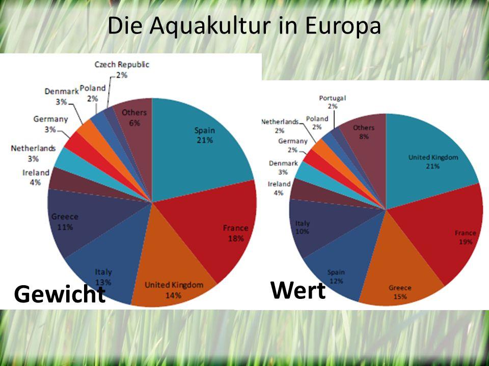 Die Aquakultur in Europa Gewicht Wert