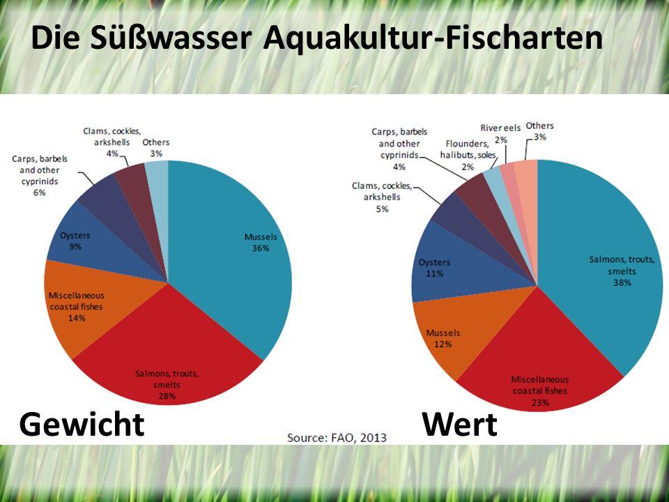 GewichtWert Die Süßwasser Aquakultur-Fischarten