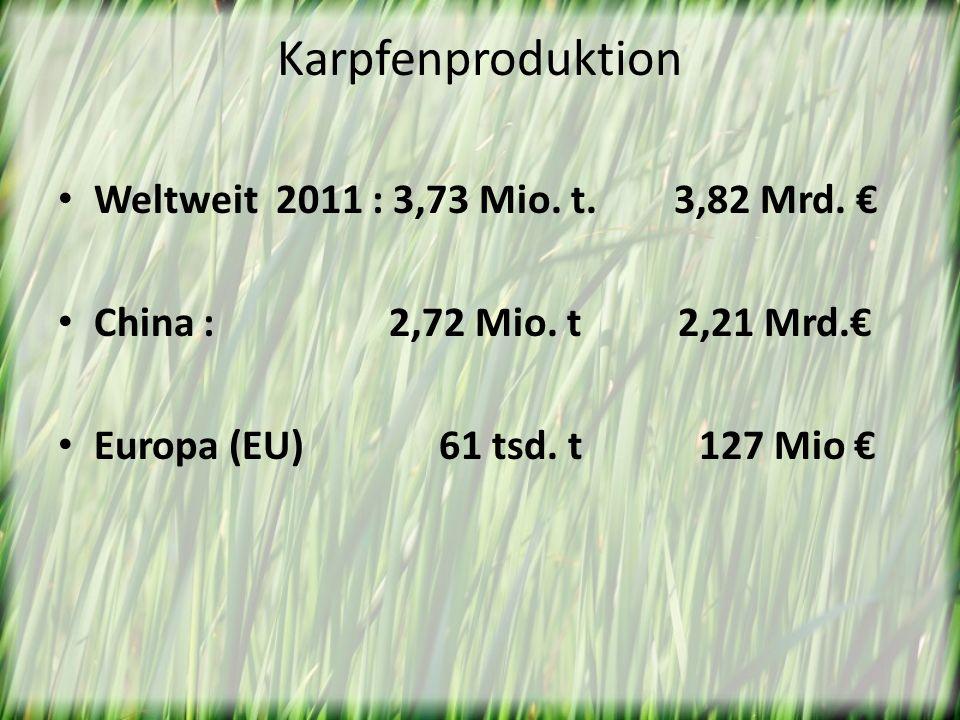 Karpfenproduktion Weltweit 2011 : 3,73 Mio. t. 3,82 Mrd. China : 2,72 Mio. t 2,21 Mrd. Europa (EU) 61 tsd. t 127 Mio