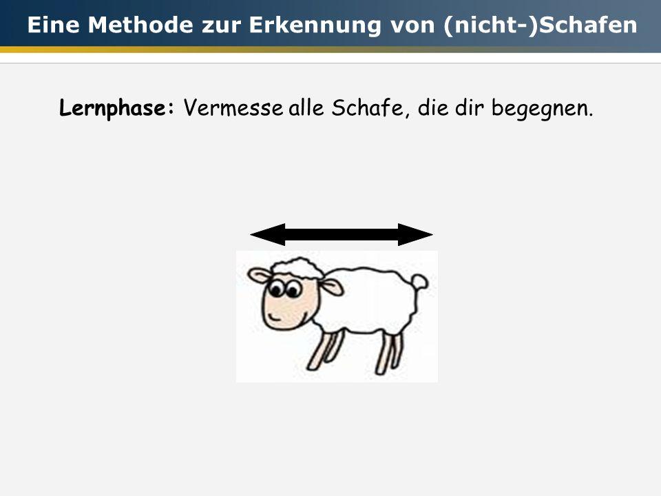 Lernphase:Vermesse alle Schafe, die dir begegnen. Eine Methode zur Erkennung von (nicht-)Schafen