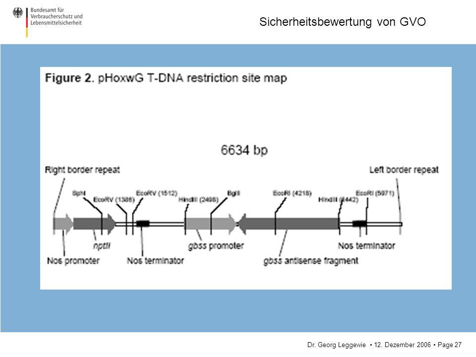 Dr. Georg Leggewie 12. Dezember 2006 Page 27 Sicherheitsbewertung von GVO