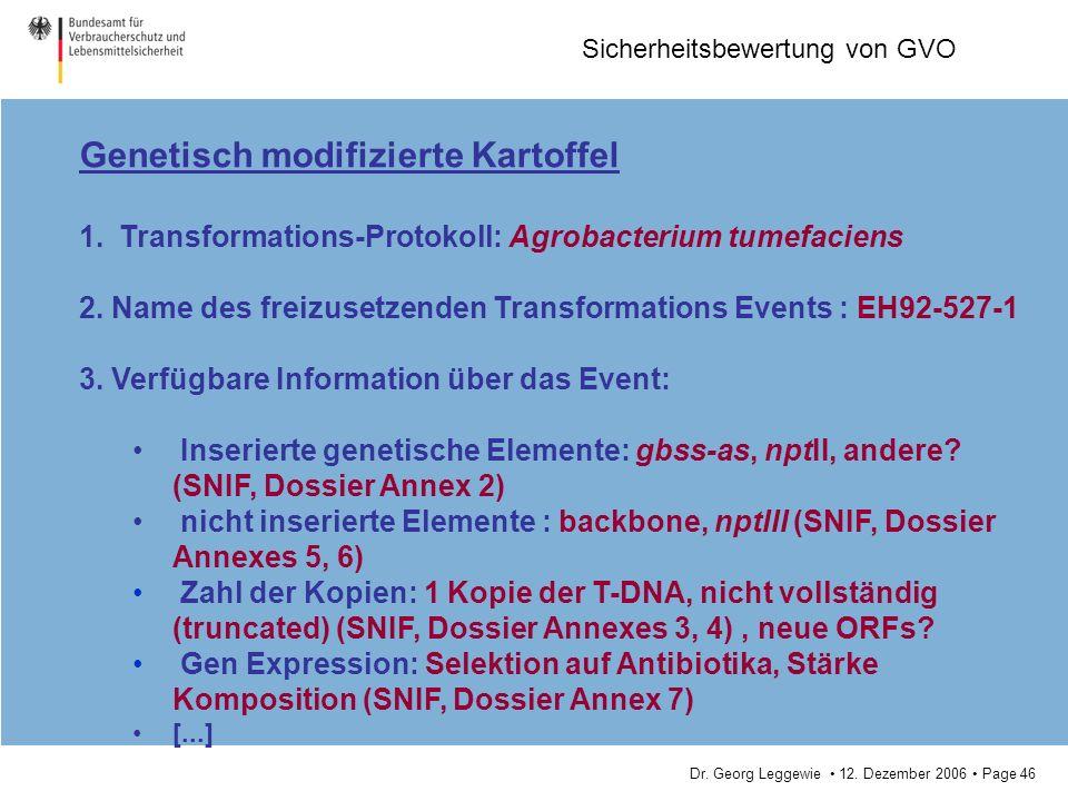Dr. Georg Leggewie 12. Dezember 2006 Page 46 Sicherheitsbewertung von GVO Genetisch modifizierte Kartoffel 1.Transformations-Protokoll: Agrobacterium