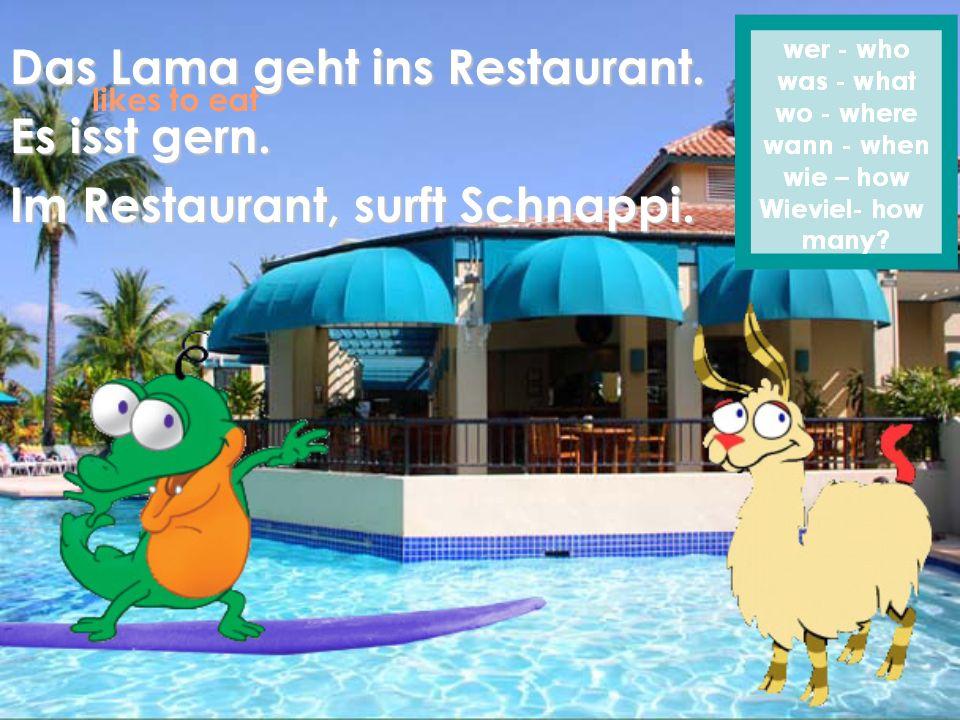 Das Lama geht ins Restaurant. Es isst gern. Im Restaurant, surft Schnappi. likes to eat