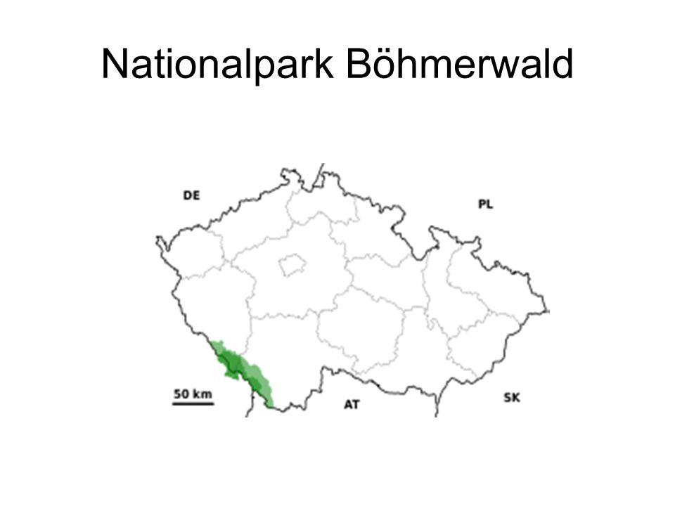 Nationalpark Böhmerwald