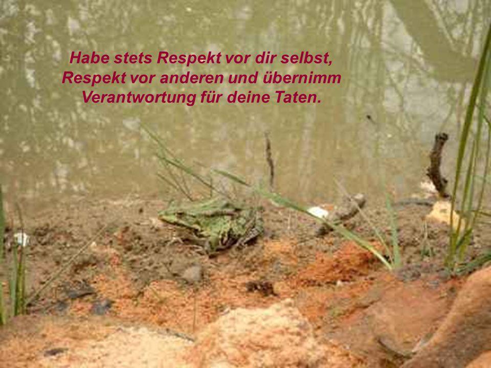 verteilt durch www.funmail2u.dewww.funmail2u.de Liebe deinen Nächsten wie dich selbst