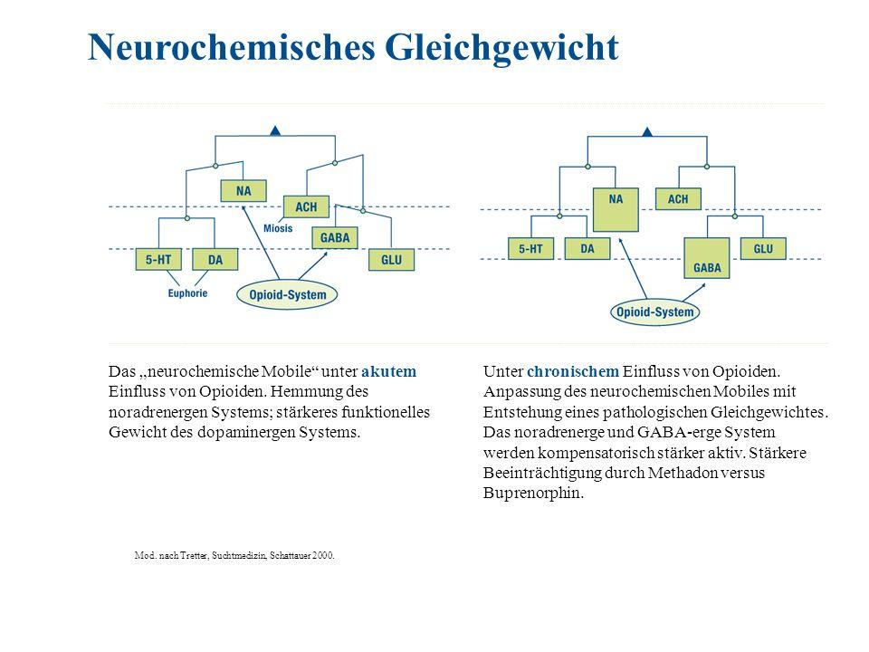 Das neurochemische Mobile unter akutem Einfluss von Opioiden. Hemmung des noradrenergen Systems; stärkeres funktionelles Gewicht des dopaminergen Syst