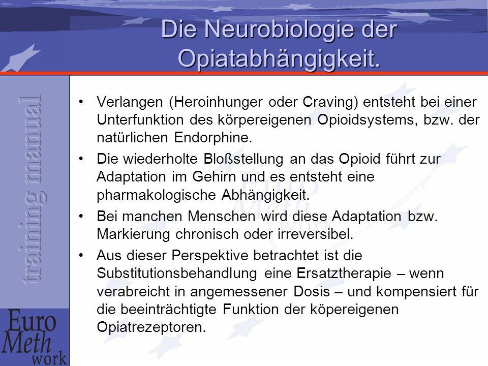 Die Neurobiologie der Opiatabhängigkeit. Verlangen (Heroinhunger oder Craving) entsteht bei einer Unterfunktion des körpereigenen Opioidsystems, bzw.