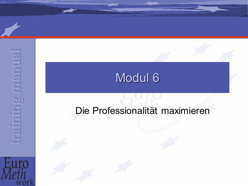 Die Professionalität maximieren Modul 6