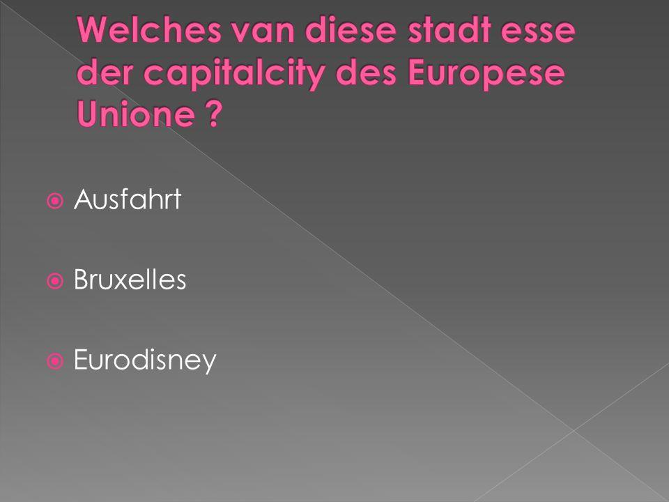 Ausfahrt Bruxelles Eurodisney