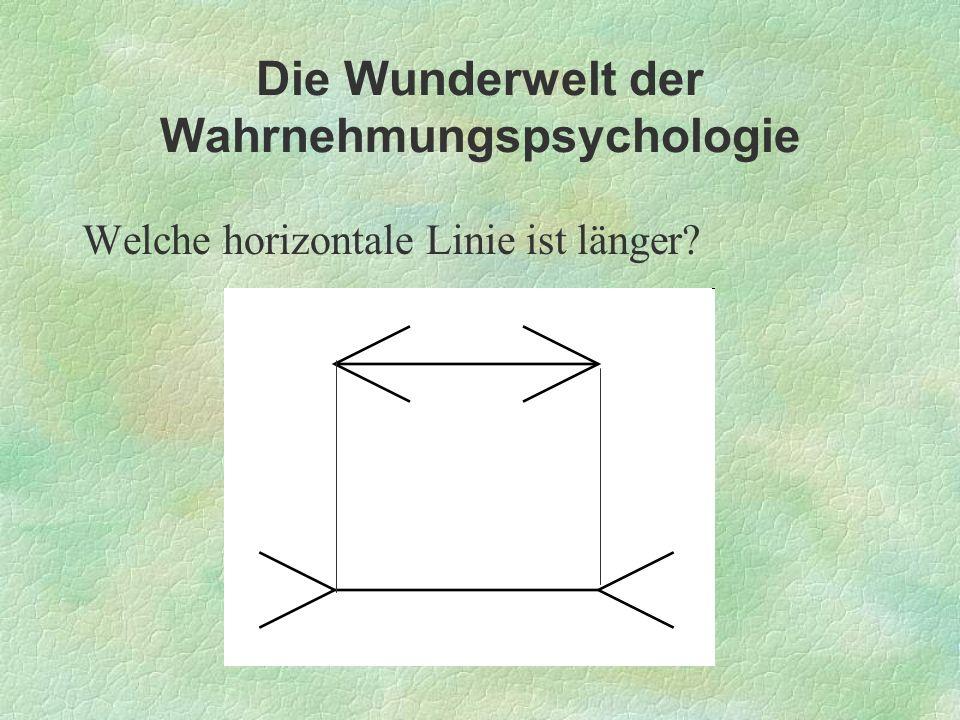 Die Wunderwelt der Wahrnehmungspsychologie Welche horizontale Linie ist länger?