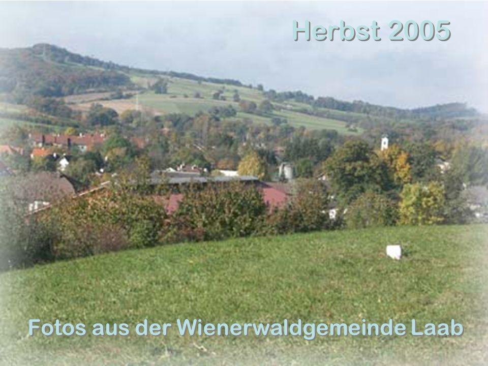 Herbst 2005 Fotos aus der Wienerwaldgemeinde Laab