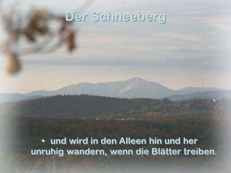 Der Schneeberg und wird in den Alleen hin und her unruhig wandern, wenn die Blätter treiben.