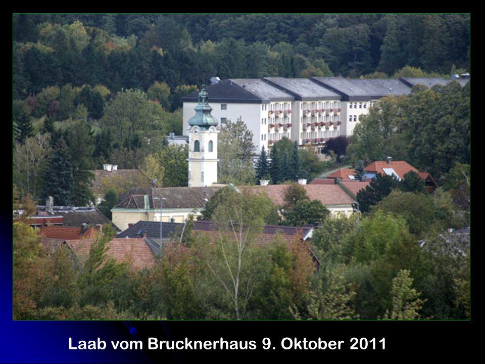 Laab vom Brucknerhaus 9. Oktober 2011
