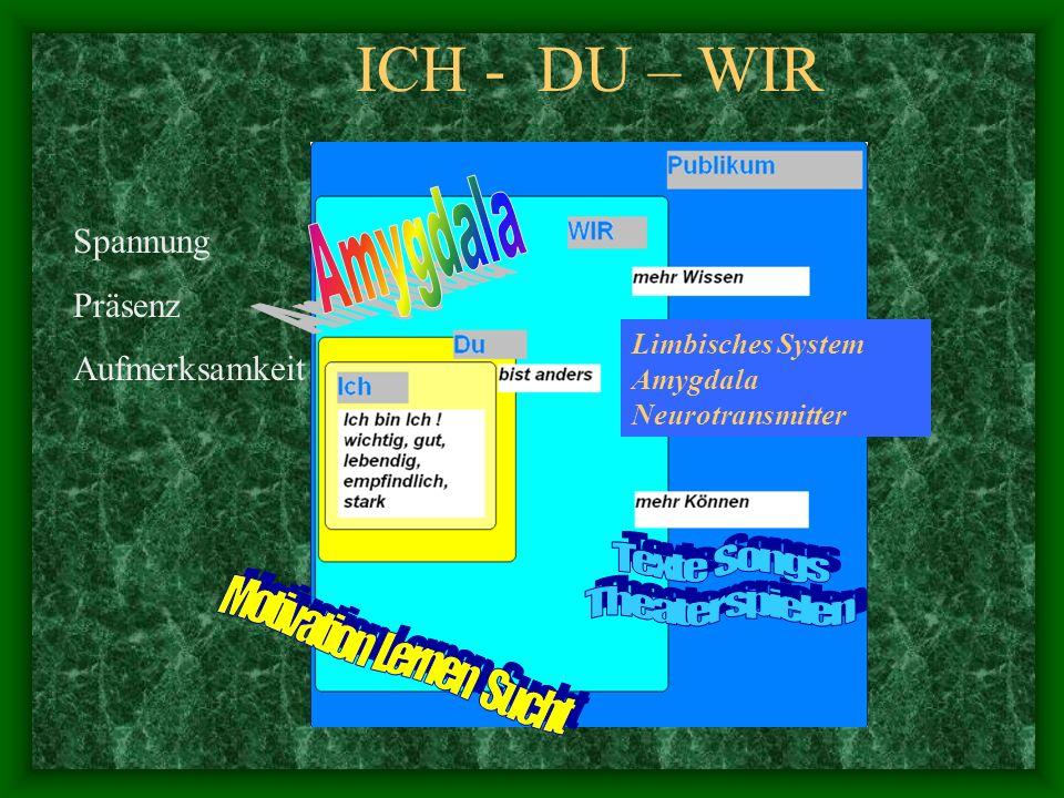 ICH - DU – WIR Spannung Präsenz Aufmerksamkeit Limbisches System Amygdala Neurotransmitter
