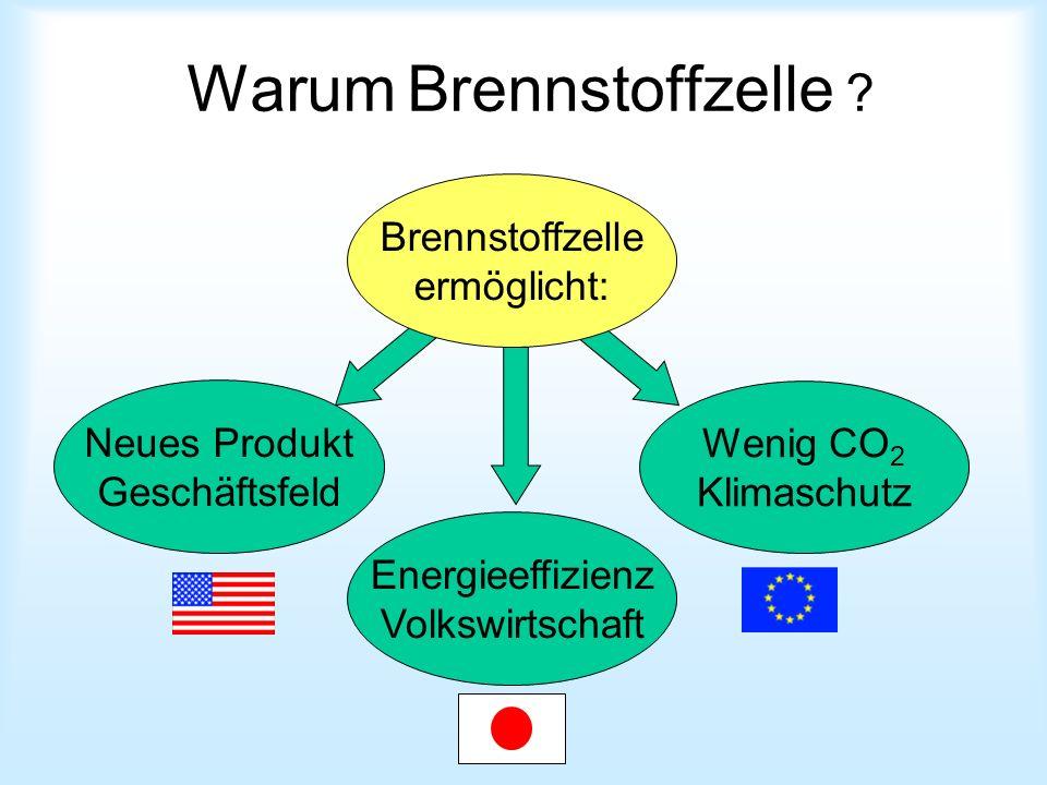 Warum Brennstoffzelle ? Neues Produkt Geschäftsfeld Brennstoffzelle ermöglicht: Energieeffizienz Volkswirtschaft Wenig CO 2 Klimaschutz