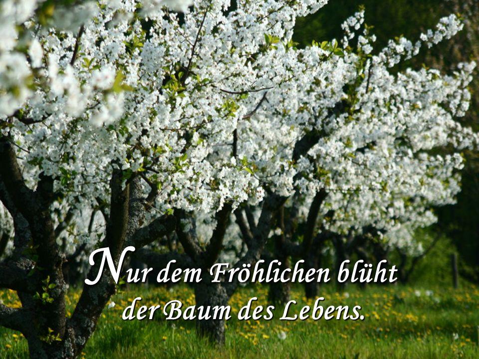 N ur dem Fröhlichen blüht der Baum des Lebens.