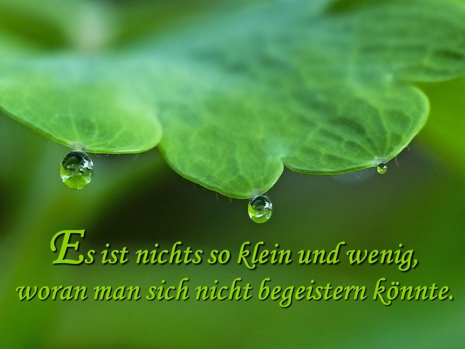 Die Freude: Das kostbare Lebenselixier, eine herrliche Medizin zur unseres Lebens.